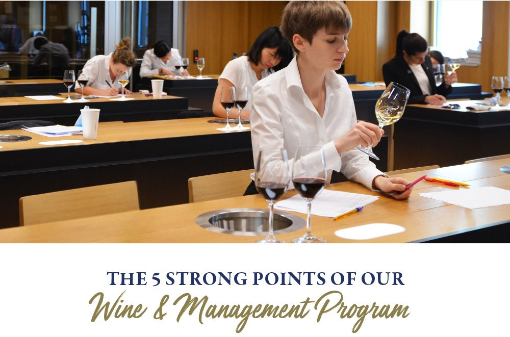 The 5 strong points of our Wine & Management Program